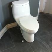 master ensuite toilet